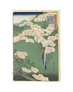Hiroshige II Utagawa, Yamato Province, Mount Yoshino,  One Hundred Famous Views in the Various Provinces
