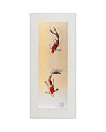 kunio kaneko, December's Comets, japanese fish, contemporary art