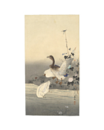 Matsumura Keibun, Three Ducks, Riverbank, Animals, River, Flowers, Original Japanese woodblock print