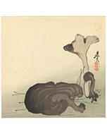 zeshin shibata, mushrooms, decorative, japanese design