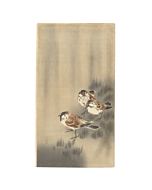 Koson Ohara, Three Sparrows, Rain