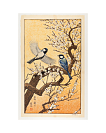 toshi yoshida, spring, birds of the seasons