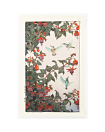 Toshi Yoshida, Hummingbird, Fuchsia, Bird and Flower, japanese woodblock print