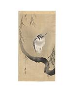 Koson Ohara, Northern Lapwing, Willow, Japanese woodblock print, Japanese antique