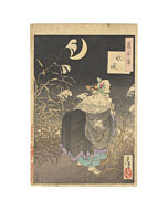 yoshitoshi tsukioka, cry of the fox, one hundred aspects of the moon