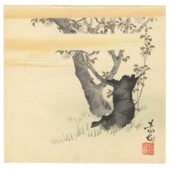 zeshin shibata, cherry blossom, sakura, spring, japanese nature