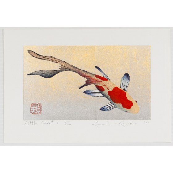 kunio kaneko, little comet, fish, japanese contemporary art
