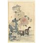 bairei kono, Waterhen and Opium Poppy, Four Seasons, Bairei's Album of Flowers and Birds(楳嶺花鳥画譜 春夏秋冬)