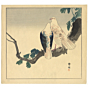 seiko okuhara, Two Pigeons on a Ginkgo Branch, birds, nature