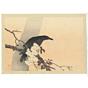 hanko kajita, A Crow on Cherry Branch
