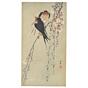 koson ohara, swallows and cherry blossoms