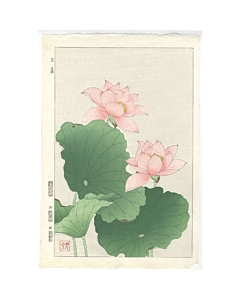 shodo kawarazaki, red lotus, flower print