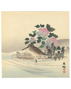 koga iijima, water bird, hydrangea, kacho-ga, bird and flower, decorative