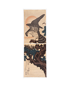 kuniyoshi utagawa, hawk on pine tree, good fortune