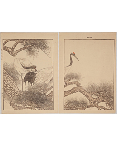 Keinen Imao, Old Pine-tree and Red-Crowned Crane, Birds and Flowers Album, Spring