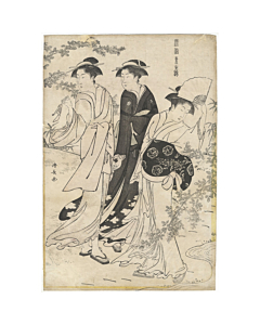 kiyonaga torii, beauty, Viewing Bush Clover, Current Manners in Eastern Brocade