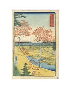 hiroshige I utagawa, Yuhigaoka at Meguro in Edo, Thirty-six Views of Mt. Fuji