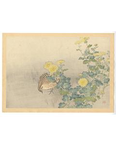 Hanko Kajita, Chrysanthemum and a Quail