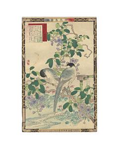 bairei kono, bird and flower