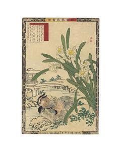 Bairei Kono, Narcissus and Mandarin Duck, Bird and Flower Print
