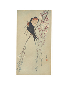 koson ohara, swallows and cherry blossoms