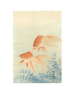 Koson Ohara, Two Goldfish, Kingyo