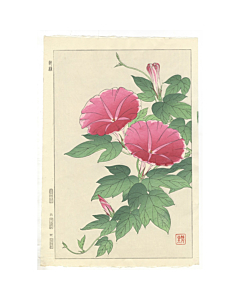shodo kawarazaki, morning glory, flower print