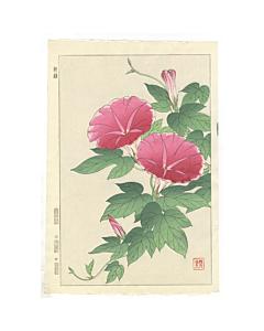 Shodo Kawarazaki, Morning Glory, Flower Print