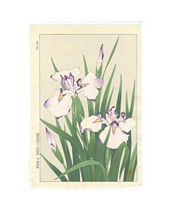 Shodo Kawarazaki, Iris, Flower Print, Botanical
