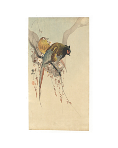 Koson Ohara, A Couple of Pheasants, bird and flower, kachoga