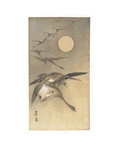 Koson Ohara, Geese in Flight, Moonlight, Bird Print