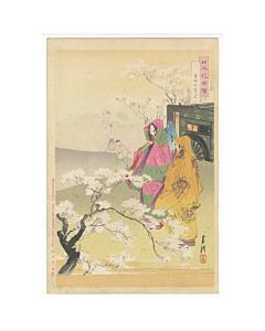 gekko ogata, cherry blossom viewing, sakura