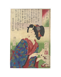 yoshitoshi tsukioka, collection of desires, beauty, meiji