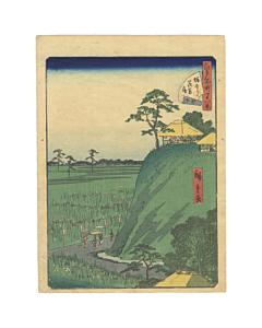 hiroshige II utagawa, landscape, iris, edo period, famous views of edo
