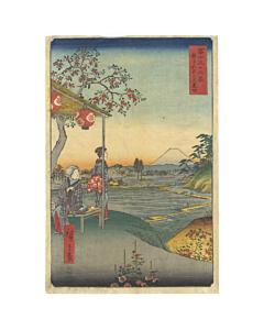 hiroshige I utagawa, hiroshige ando, edo period, japanese landscape, mount fuji, tea house