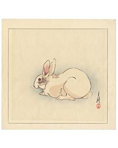 gekko ogata, white rabbit