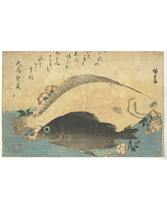 Hiroshige Ando, Halibut, Rockfish and Cherry Blossoms, Grand Series of Fish