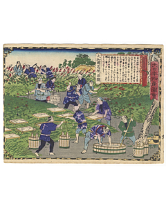 hiroshige III utagawa, Yamato Province, Digging Kudzu Plant, Famous Products of Japan (大日本物産図会)