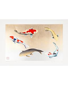 kunio kaneko, birthday, fish, contemporary art