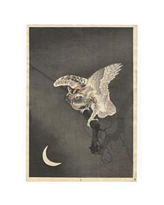 Koson Ohara, Owl, Bird Print