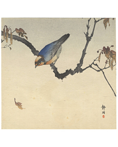 Seiko Okuhara, Blue Bird on a Branch, Kacho-ga