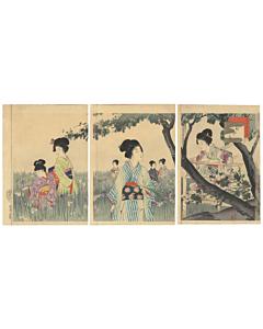 shuntei miyagawa, iris garden, kimono design