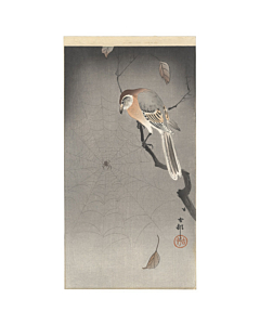 koson ohara, bird and spider