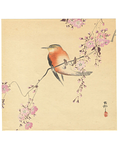 koson ohara, bird and flower, cherry blossom, sakura, blooming flower, japanese spring