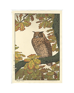 toshi yoshida, eagle owl, bird and flower
