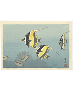 Toshi Yoshida, Hawaiian Fishes B, Marine Life