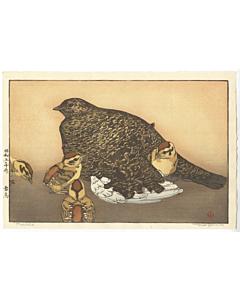 toshi yoshida, raicho, bird print