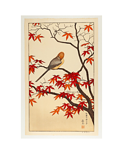 toshi yoshida, autumn, birds of the seasons