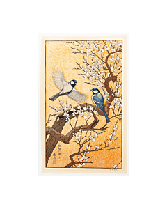 toshi yoshida, spring, bird, plum tree, japanese woodblock print