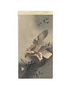 Koson Ohara, Eagle with Outspread Wings, bird, japanese woodblock print, japanese antique